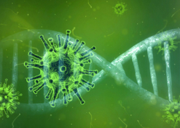SARS-Cov_2 variants of concern - assays from Bio-Rad