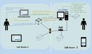 Ziath DP5 Network